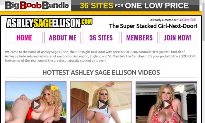 ashleysageellison.com