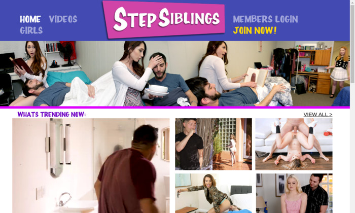 stepsiblings.com
