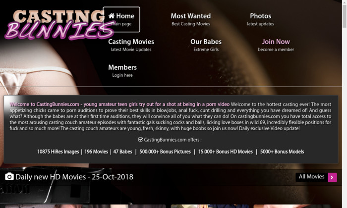 castingbunnies.com