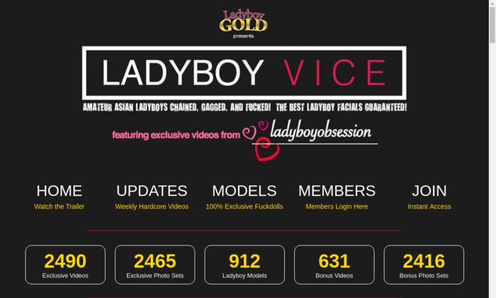 ladyboyvice.com