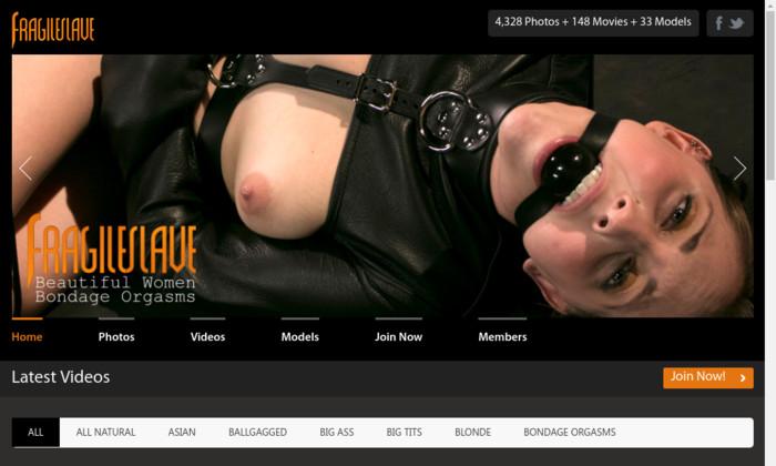 fragileslave.com