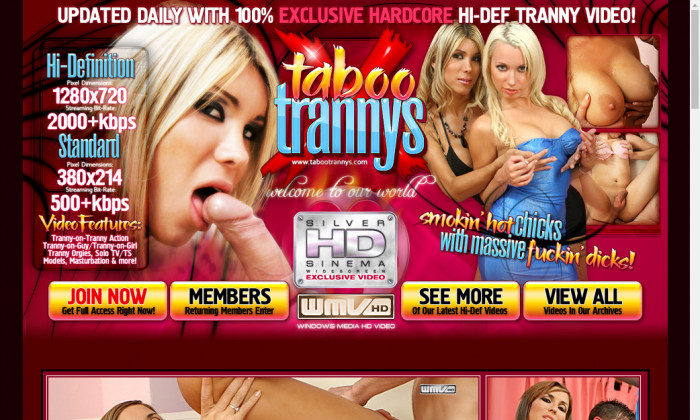 tabootrannys.com