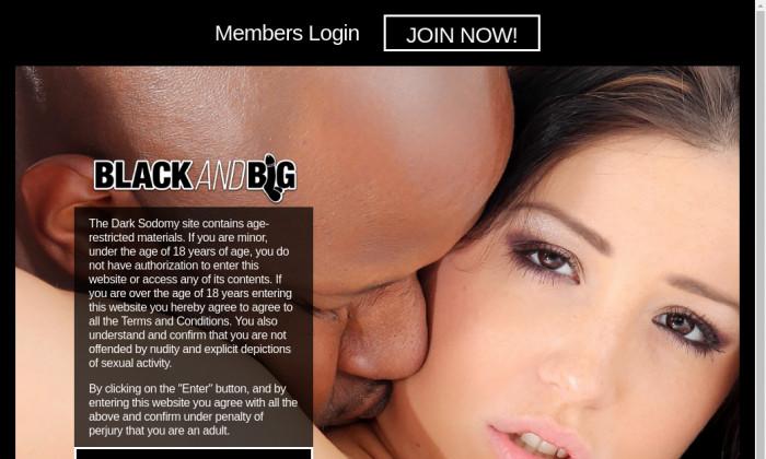 blackandbig.com