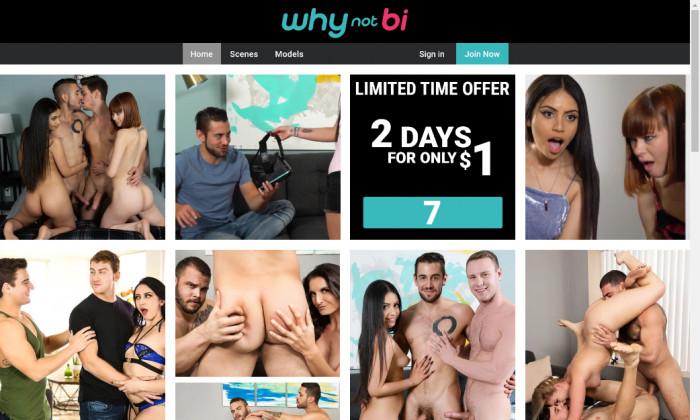 whynotbi.com
