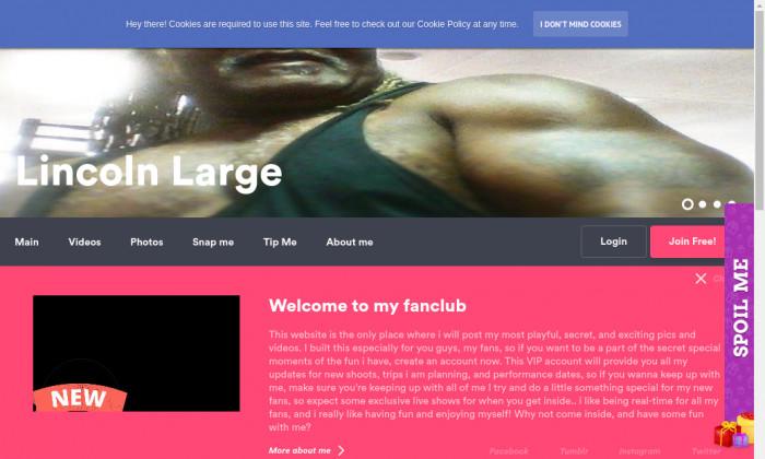 lincolnlarge.com