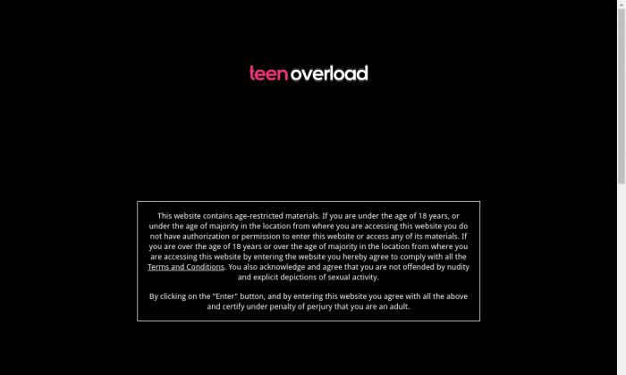 teenoverload.com